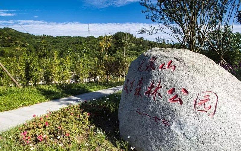 成都假日租车自驾路线推荐-龙泉山森林公园